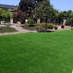 After photo Lanscape Turf Encinitas,CA