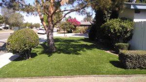 fake lawn rancho santa fe