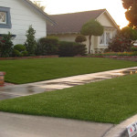 landscape turf services available in san diego
